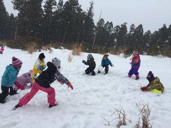 4.5歳児 〜雪遊び〜_b0117125_17045069.jpeg
