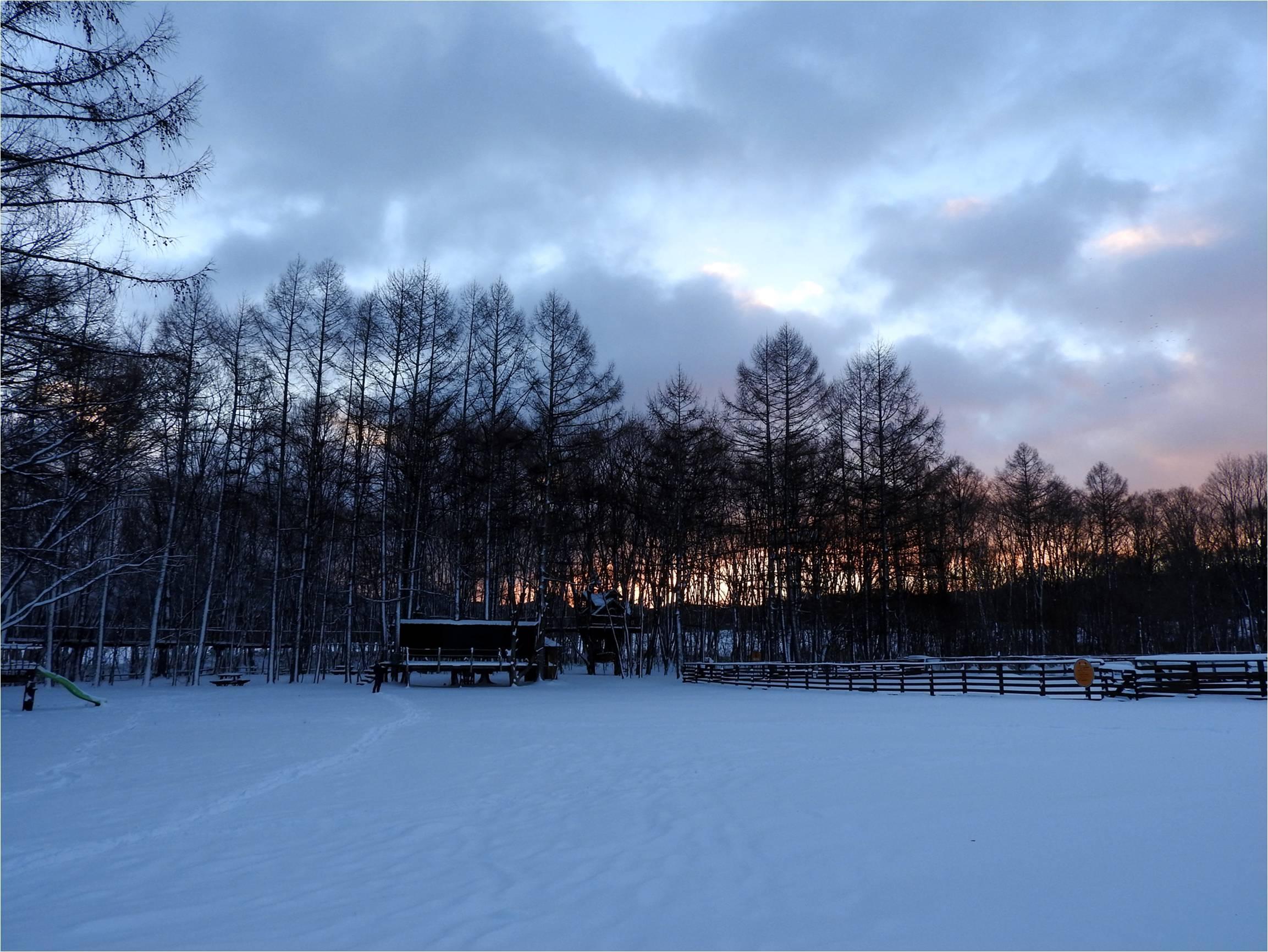 今週末の天気と気温(2019年1月31日)_b0174425_14322993.jpg