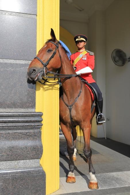 【マレーシア王宮 ISTANA NEGARA】マレーシア旅行 - 10 -_f0348831_23092548.jpg