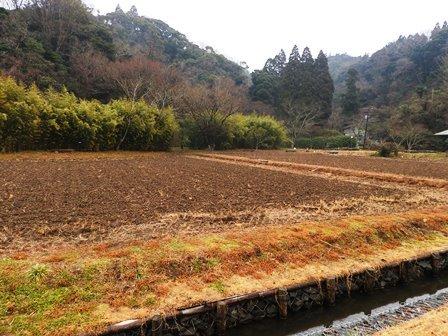 大地を潤す雨_a0123836_13495237.jpg