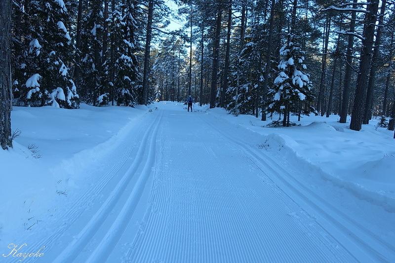 スキー始め_a0353839_00054345.jpg