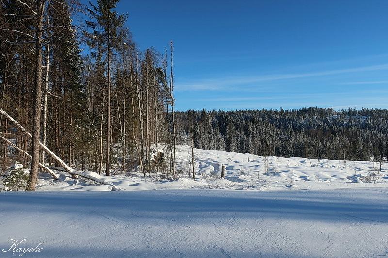 スキー始め_a0353839_00075970.jpg