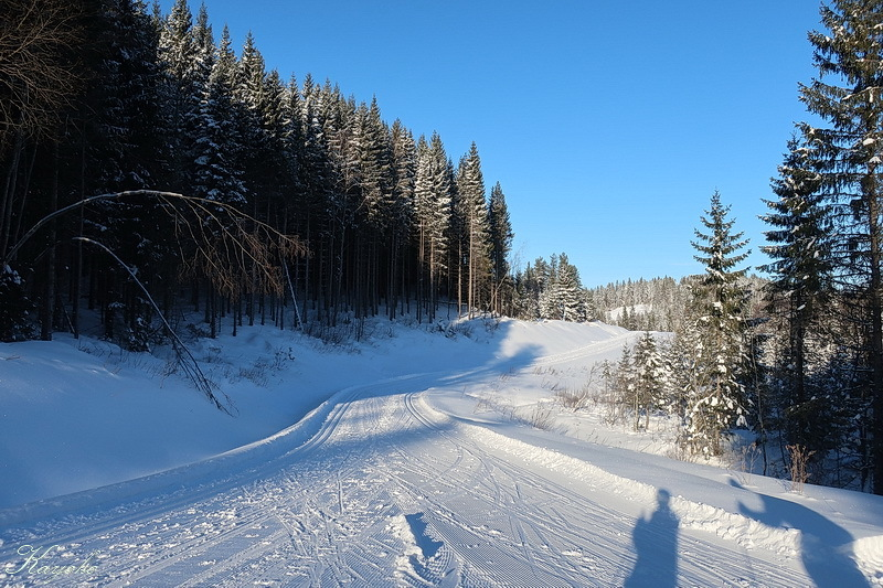スキー始め_a0353839_00091776.jpg