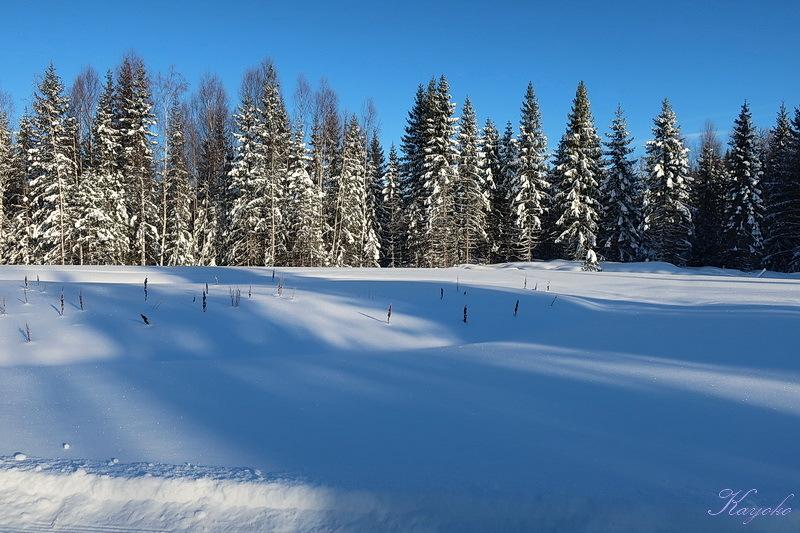 スキー始め_a0353839_00130393.jpg