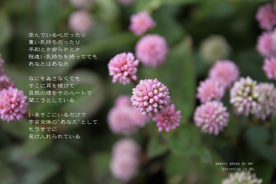 f0351844_16163416.jpg