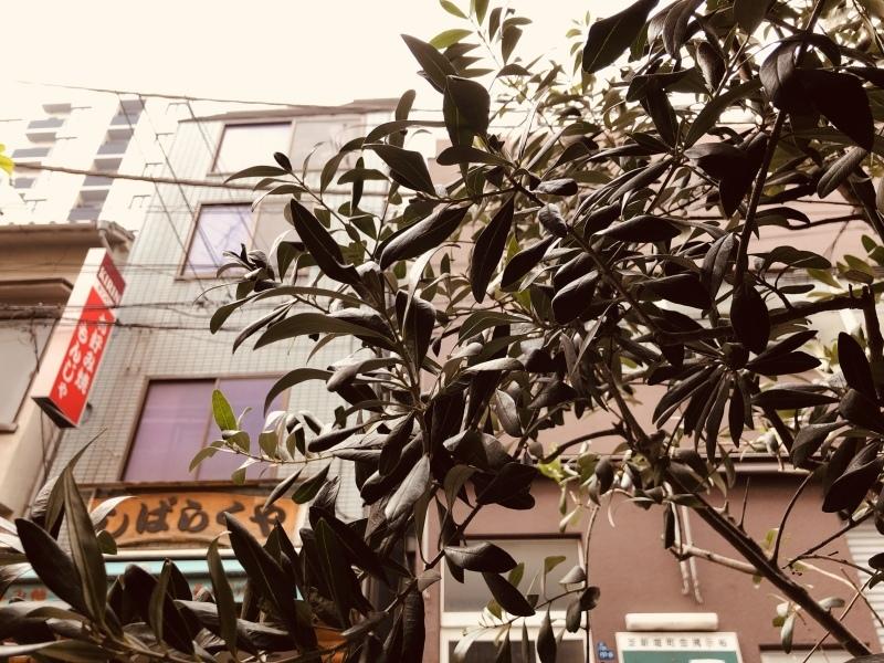 雪降るんかいな⛄️2月スタートです。&2月1日(金)のランチメニュー_d0243849_14414336.jpeg