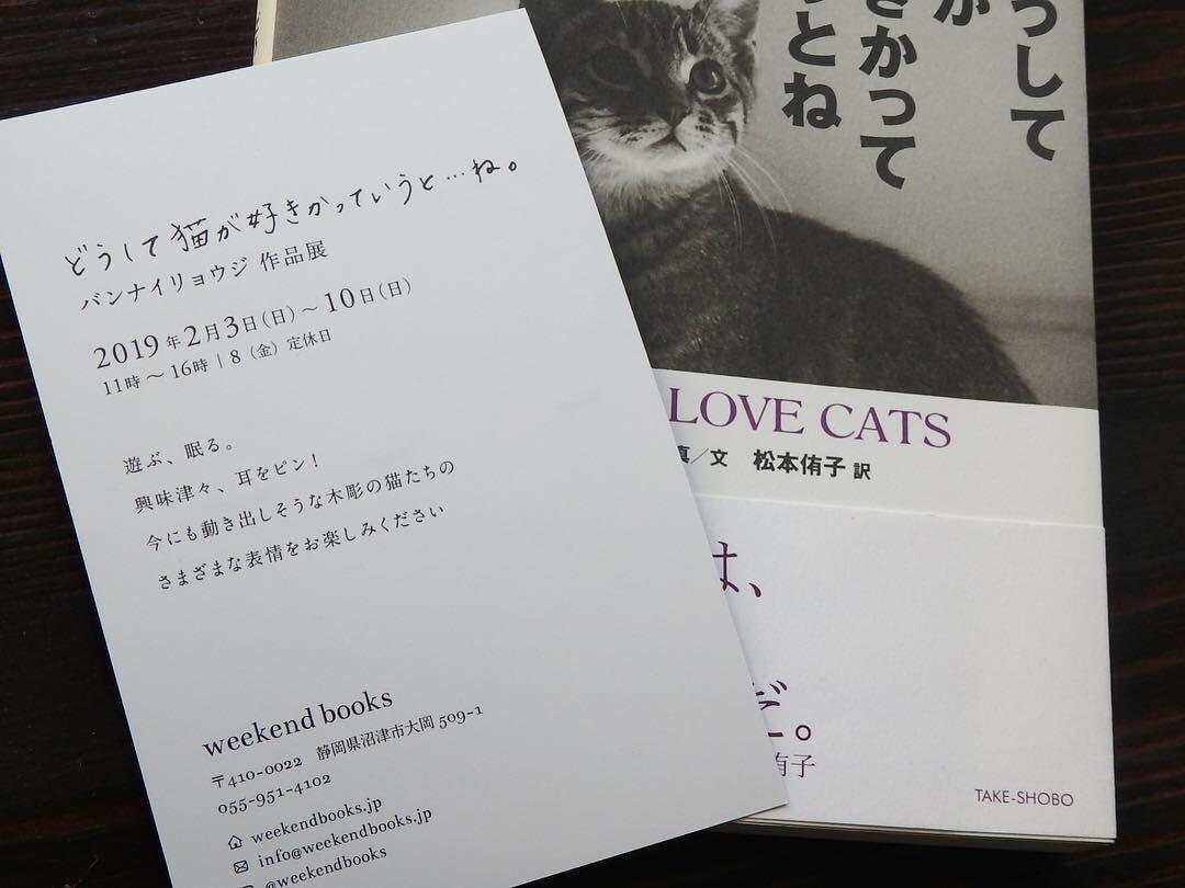 【どうして猫が好きかっていうと…ね。バンナイリョウジ作品展】のお知らせ。_e0060555_10052409.jpg