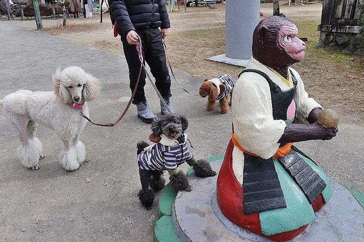 桃太郎神社~^^_b0111376_14050288.jpg
