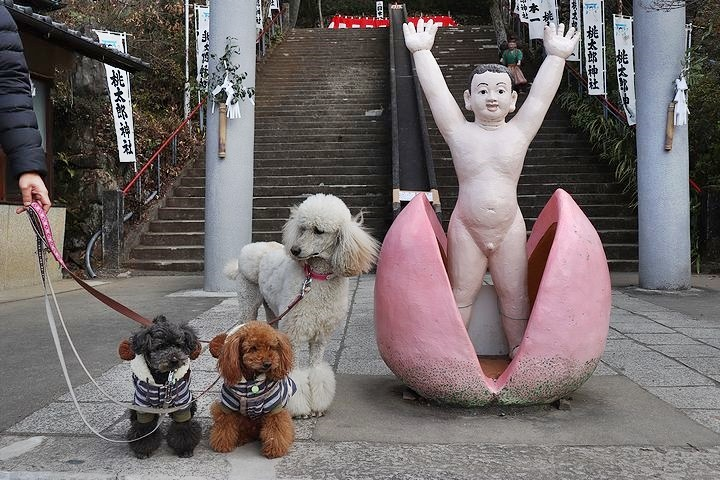 桃太郎神社~^^_b0111376_14231680.jpg