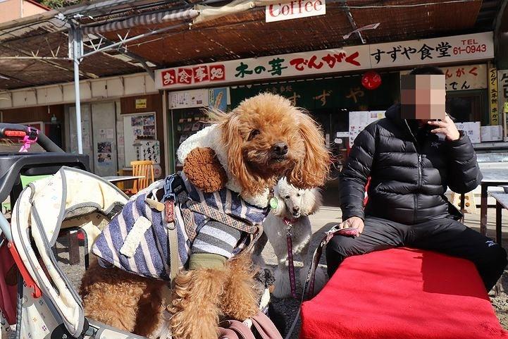 桃太郎神社~^^_b0111376_14450996.jpg