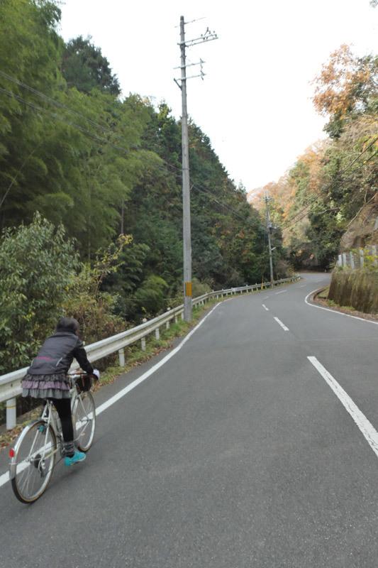 京都西山をうろちょろしてみた。_d0383596_22124225.jpg