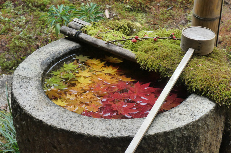 京都西山をうろちょろしてみた。_d0383596_22124276.jpg