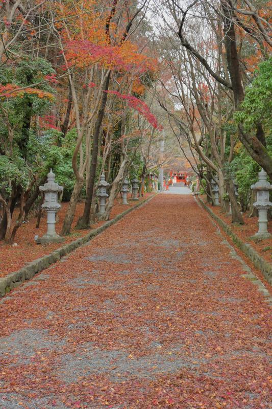 京都西山をうろちょろしてみた。_d0383596_22131520.jpg