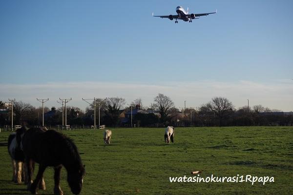 旅人からの写真 イギリス ブダペスト_c0365711_07300608.jpg