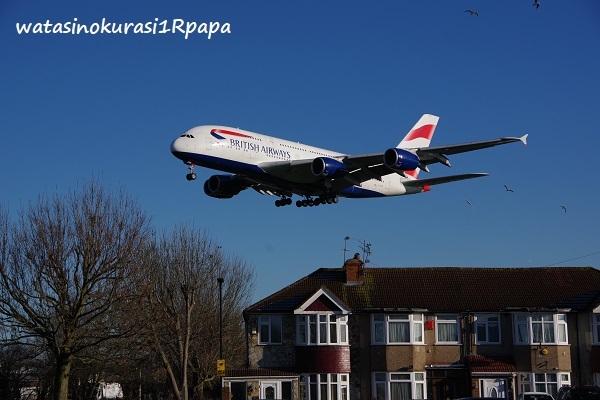 旅人からの写真 イギリス ブダペスト_c0365711_07300616.jpg