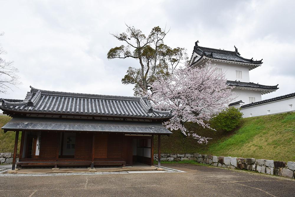 桜満開の赤穂城を歩く。 その1 「大手門~武家屋敷跡」_e0158128_14435534.jpg
