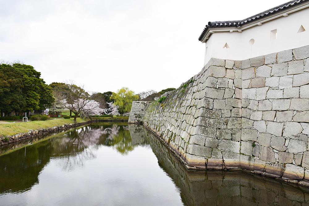 桜満開の赤穂城を歩く。 その3 「本丸」_e0158128_16321569.jpg