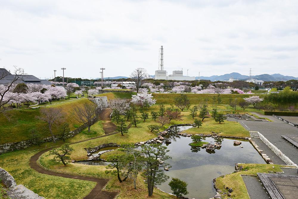 桜満開の赤穂城を歩く。 その3 「本丸」_e0158128_17254769.jpg
