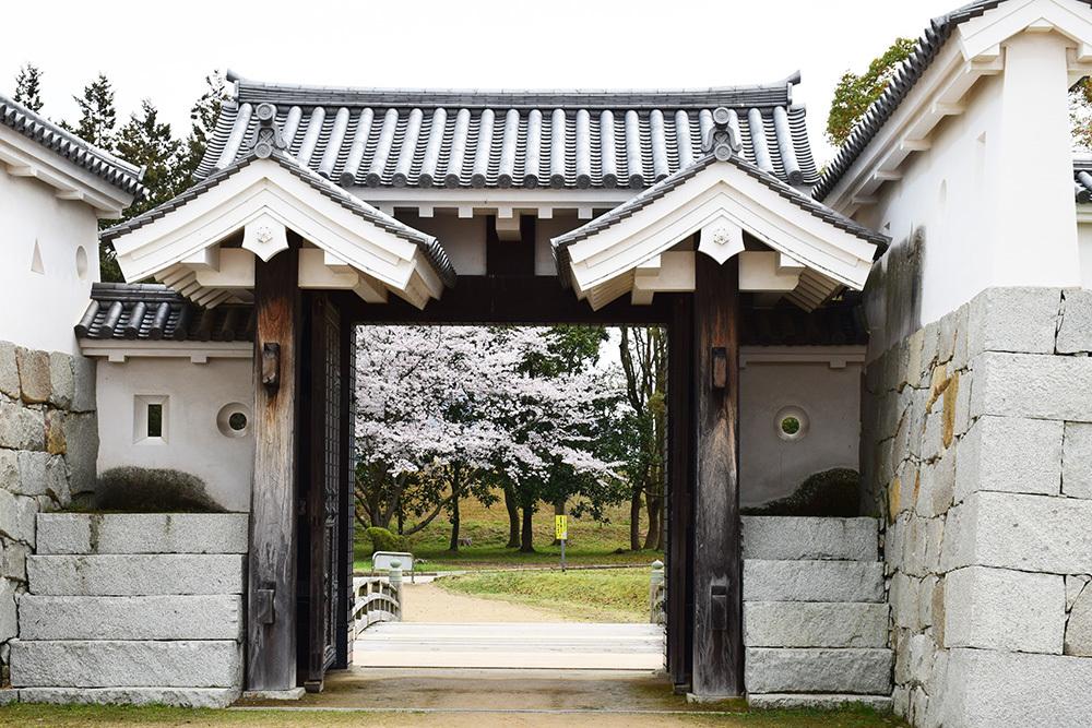 桜満開の赤穂城を歩く。 その4 「元禄桜苑」_e0158128_17415011.jpg
