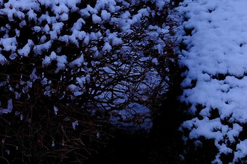 初雪残雪ー1_b0230131_17014512.jpg