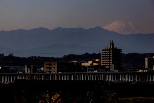 Mt. Fuji   ・・・世田谷からの富士見・・・_f0333031_16364679.jpg