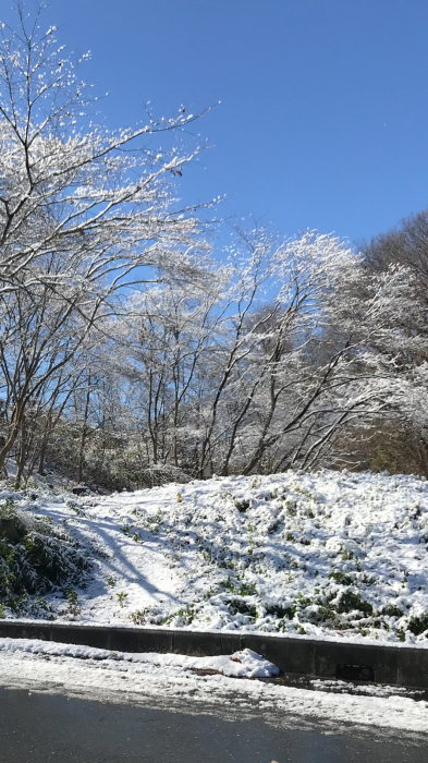 雪化粧の武甲山!!_f0194657_16521130.jpg