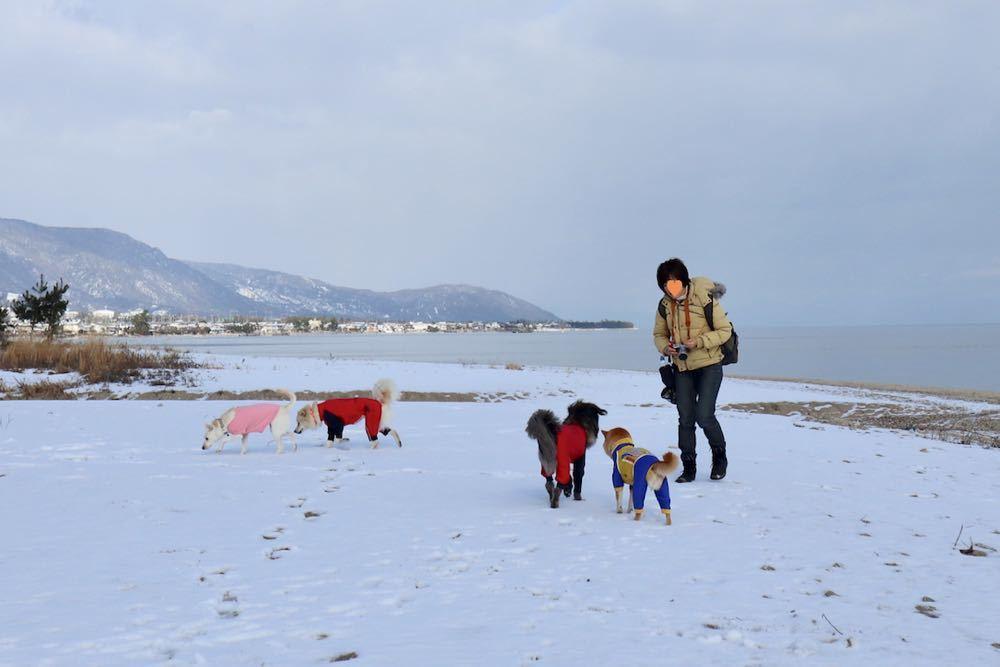 琵琶湖 with 小春小雪 〜小春編_a0119263_18231652.jpg