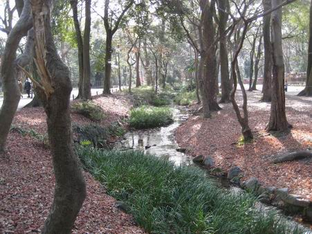 日本滞在 1 芦原温泉から京都へ_a0280569_1102012.jpg