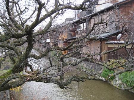 日本滞在 1 芦原温泉から京都へ_a0280569_1111115.jpg