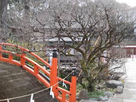 日本滞在 1 芦原温泉から京都へ_a0280569_175880.jpg