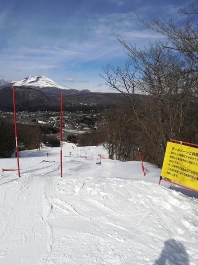 可愛い雪上の足跡_e0356469_22164431.jpg