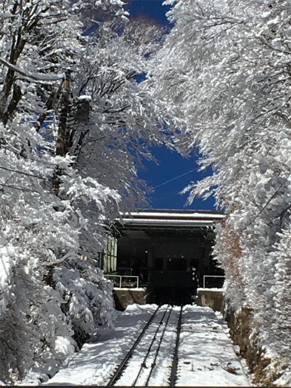 昨夜雪が降ったようです・・・_f0368272_20160319.jpg