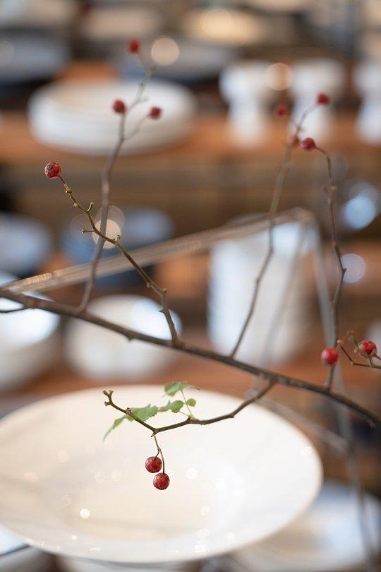 特別な日のための白い食器_d0353489_18440807.jpg