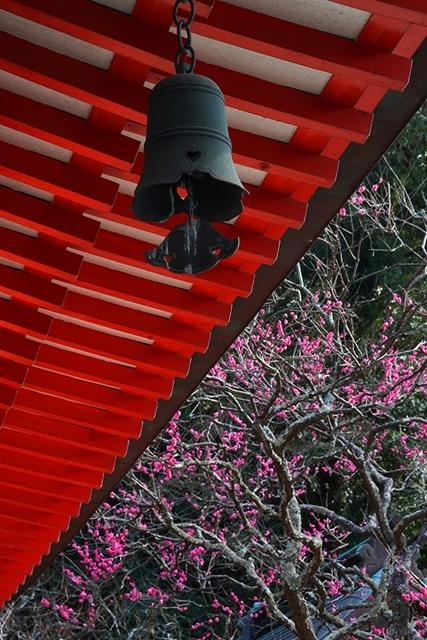 荏柄天神社の梅_b0145398_23420361.jpg