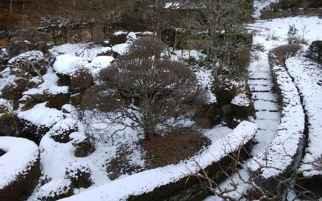 雪だ~~~~(人´▽`*)♪❄️_c0067206_07131959.jpg