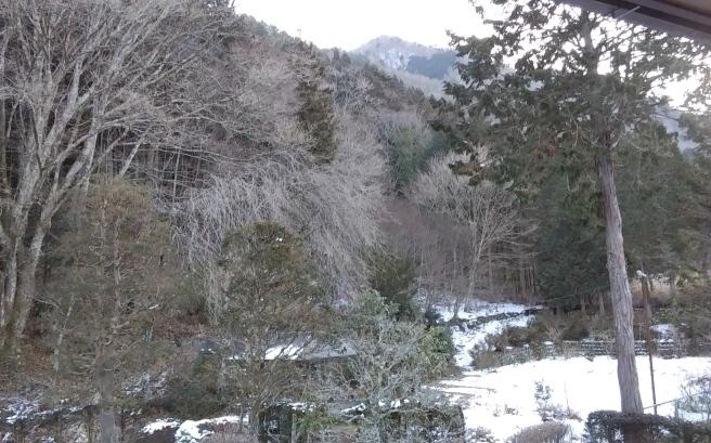 雪だ~~~~(人´▽`*)♪❄️_c0067206_07133767.jpg