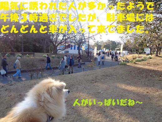 f0121712_23251640.jpg
