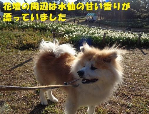 f0121712_23325577.jpg