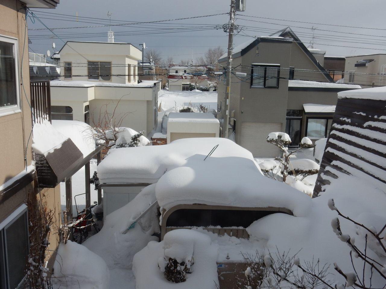 ようやく冬の嵐がおさまりました_c0025115_22271630.jpg