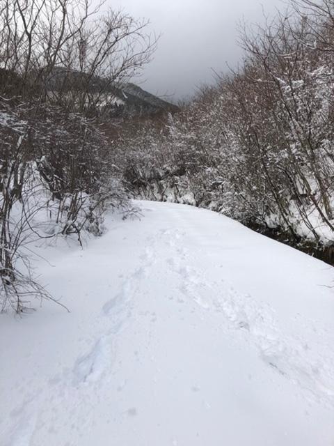 雪×ダナー_b0226322_10060462.jpg