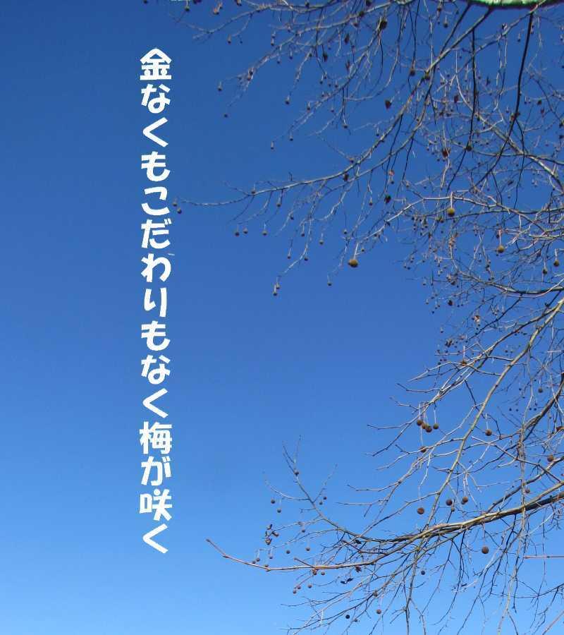 f0117041_05442325.jpg