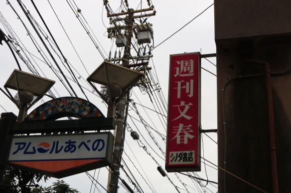 アムールあべのとその周辺 (大阪市阿倍野区)_c0001670_19504660.jpg
