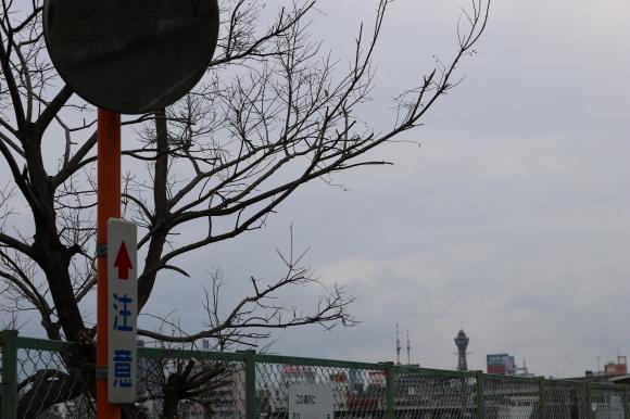 アムールあべのとその周辺 (大阪市阿倍野区)_c0001670_19532394.jpg