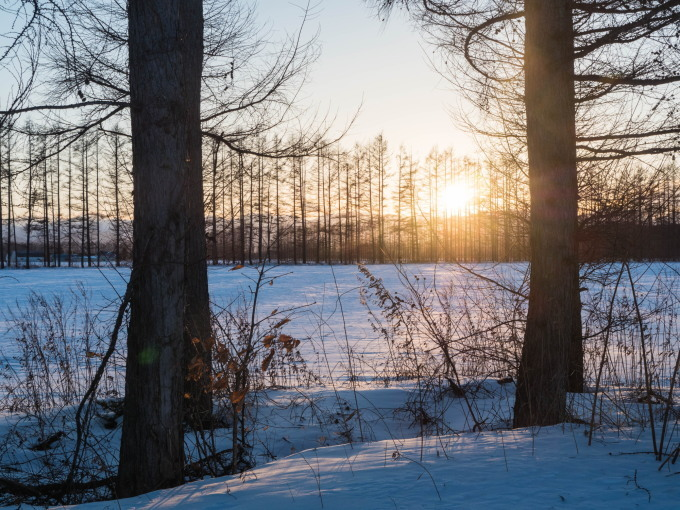 2月晴れて風の強い日・・村道を通ってピョウタンの滝へ_f0276498_23381351.jpg