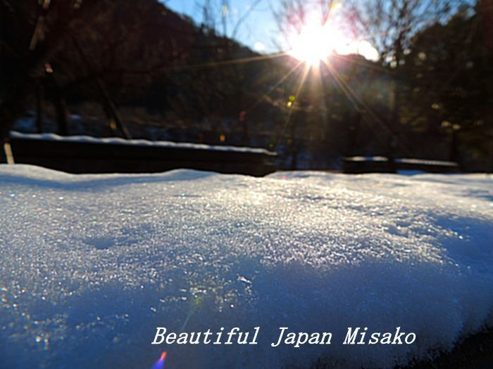 冬の彩り。☆、・:`☆・・゚・゚☆。。_c0067206_16013335.jpg