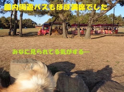 f0121712_00113782.jpg
