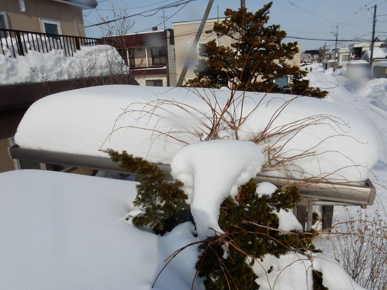 ガレージの屋根_c0025115_21312628.jpg