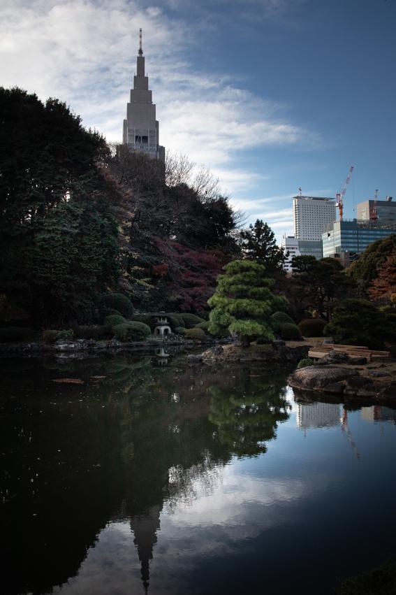 Park    ・・・御苑・・・_f0333031_08273015.jpg