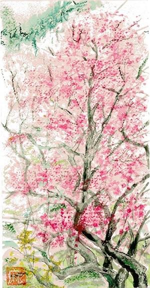 春が来た!_a0333195_22172039.jpg