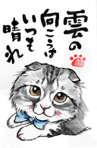 雨凛ちゃん トルコキキョウ_f0375804_08095847.jpg